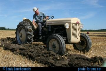 1956 Ferguson TO-35 at  Navan Ontario Plowing Match
